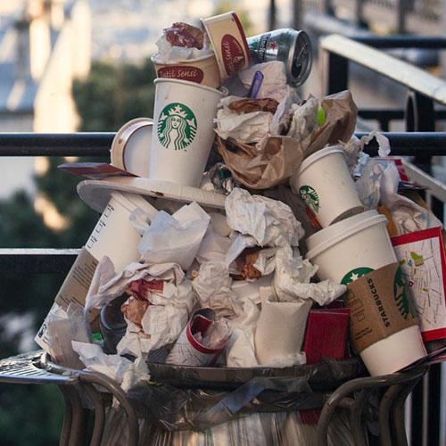 Tényleg az eldobható kávéspohárakért  irtjuk  az erdőket?